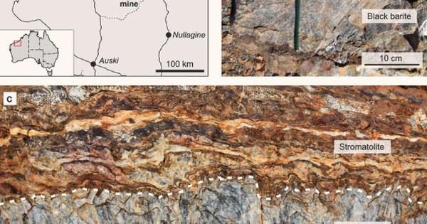 """Đào mỏ đá, thấy thứ quý hơn vàng: """"nhà"""" của sinh vật cổ nhất Trái Đất"""