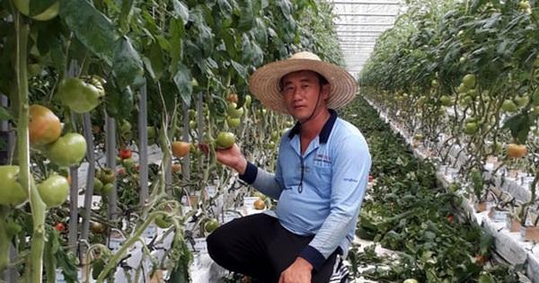 Thông tin quan trọng dành cho lao động Việt Nam tại Hàn Quốc