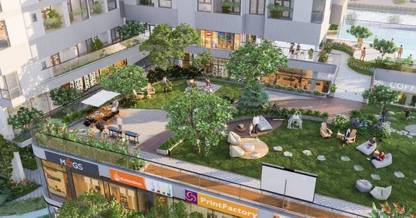 DHA Corp tiên phong phát triển mô hình căn hộ tăng trải nghiệm Staycation
