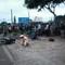Xe máy mất lái ủi xe công nông, 2 thanh niên tử nạn