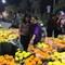 Khai mạc chợ hoa xuân Bình Điền