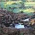 Độc đáo giếng cổ 2.000 năm tuổi ở Quảng Trị